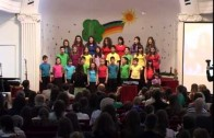 Harmonija prijateljstva – Deca iz Južnog Banata, DEDUM 2013