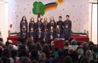 Pevaću o ljubavi – Deca iz Negotina i Bukovča, DEDUM 2013