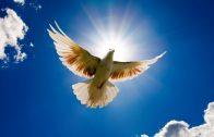 10. Sveti Duh, Reč i molitva